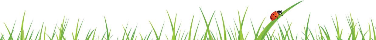 grass footer divider